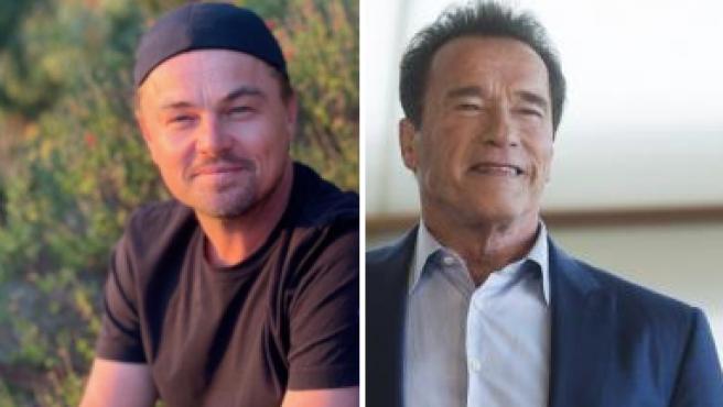 DiCaprio y Schwarzenegger promoverán 500 proyectos de más de 4.500 millones de euros para descarbonizar el planeta