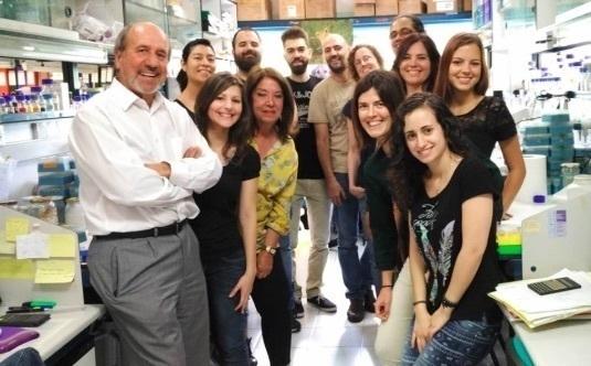 Investigadores españoles del CSIC participan en el desarrollo de una vacuna contra el VIH-SIDA