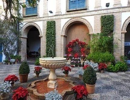 El Palacio de Viana ofrece por Navidad teatro, actividades infantiles y un concierto navideño