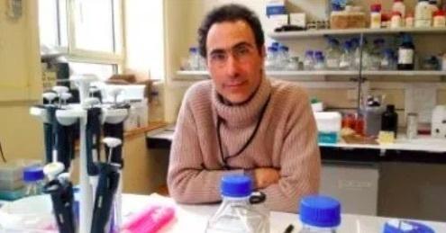 Investigadores españoles descubren una nueva manera de luchar contra las bacterias